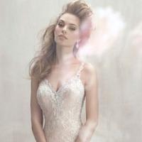 Vestido de Noiva IN-A520N