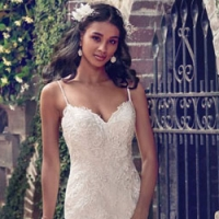 Vestido de Noiva IN-A608N
