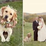 O melhor amigo também vai ao casamento