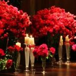 Flores de Casamento: Descubra o significado de cada uma
