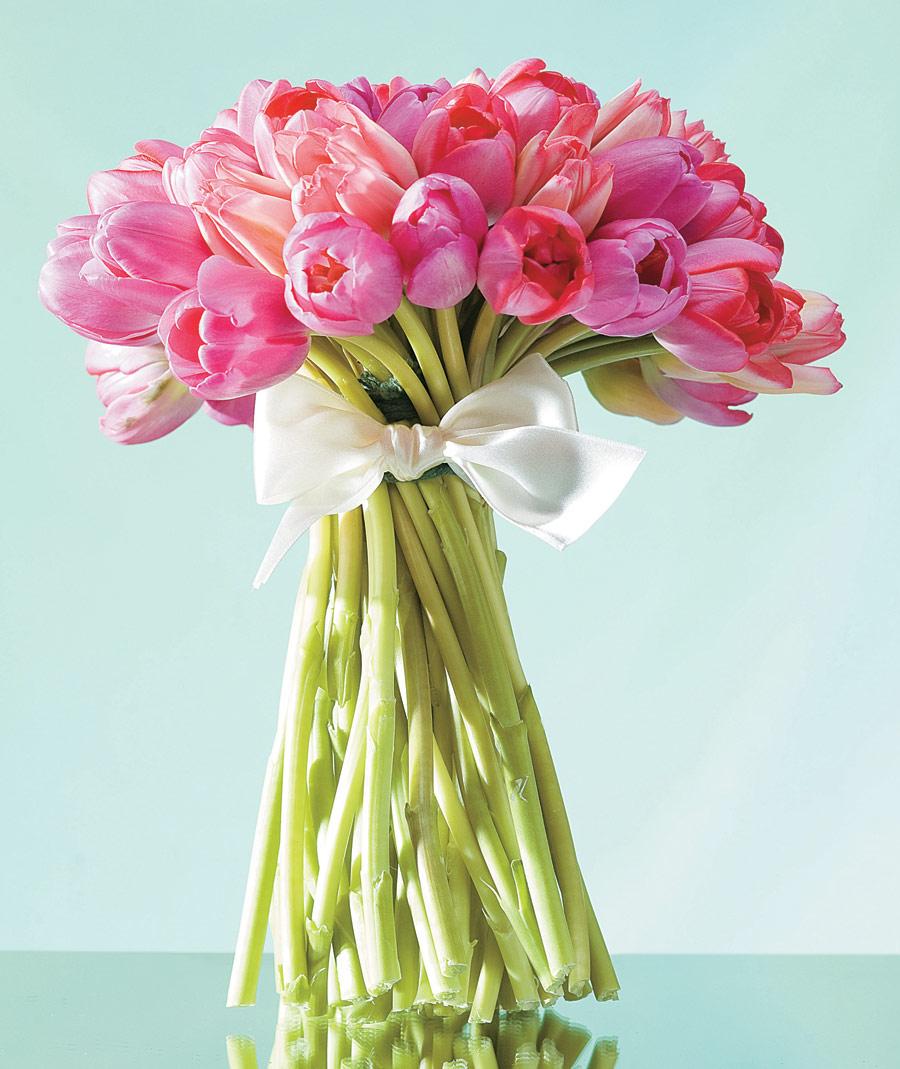 buque-tulipas-cor-de-rosa-nina-vila